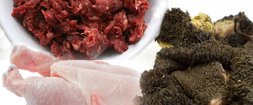 Best Raw Food For Dogs